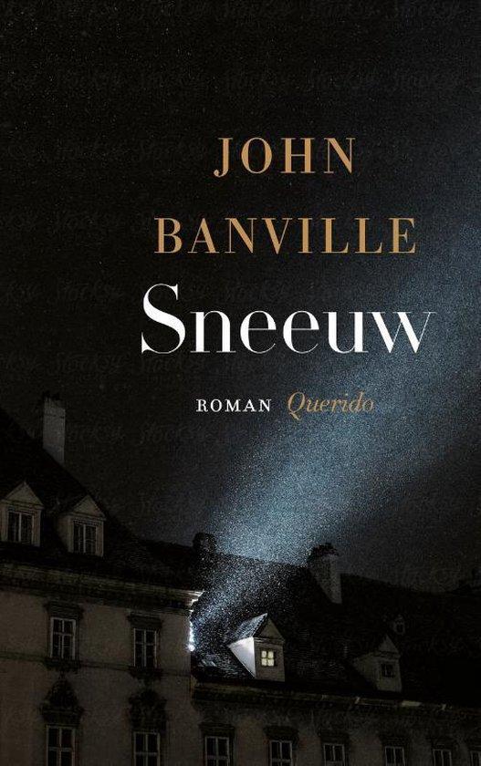 Sneeuw van John Banville